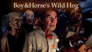 Wild Hog… Surprise!